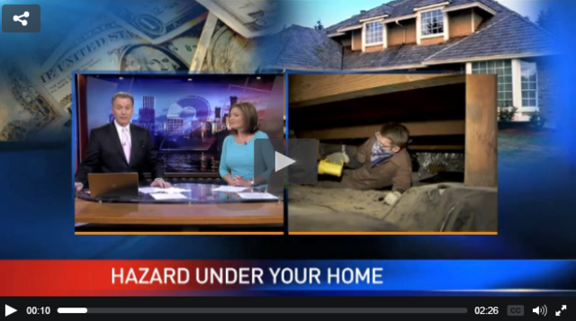 What's under your house could be potentially hazardous - Image 1
