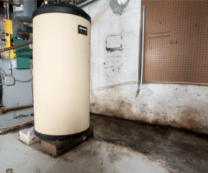 Buying and Selling a Home with a Wet Basement - Image 2